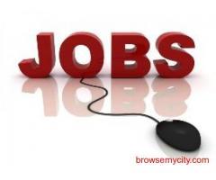 Job Search   Jobs Hiring   Best Jobs