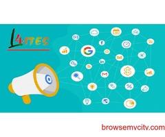 Website Designing Greater Noida