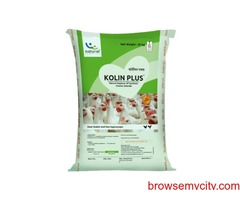Natural Liver Supplement for Poultry   Heat Stress in Poultry