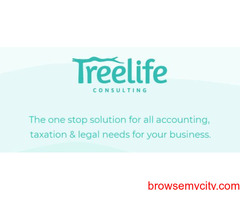 Chartered Accountant Services for Startup in Mumbai - Treelife Consulting
