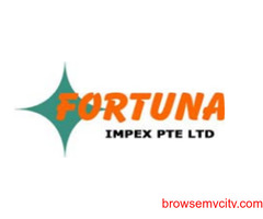 Best Door Access System | Fortuna Impex