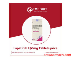 Lapatinib 250mg Tablets Suppliers in India