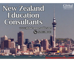 New Zealand Education Consultants in Delhi