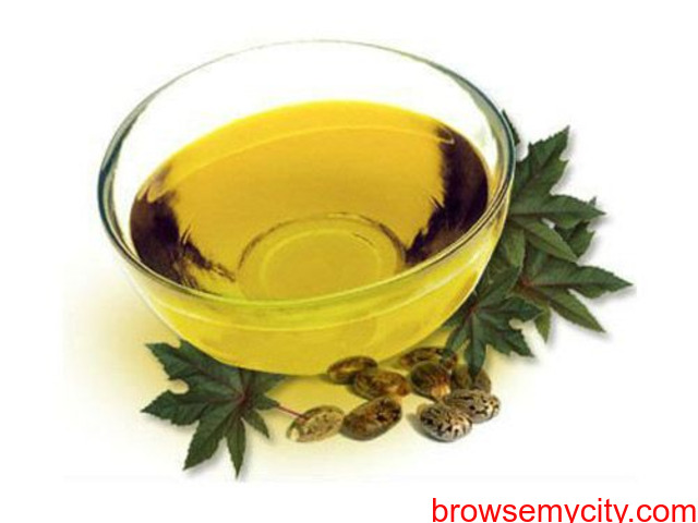 Various Uses Of Castor Oil | Pan Oleo - 1/1