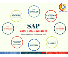 SAP MDG Online Training | SAP MDG Course