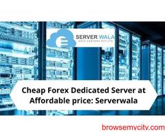 Cheap Forex Dedicated Server at Affordable price: Serverwala