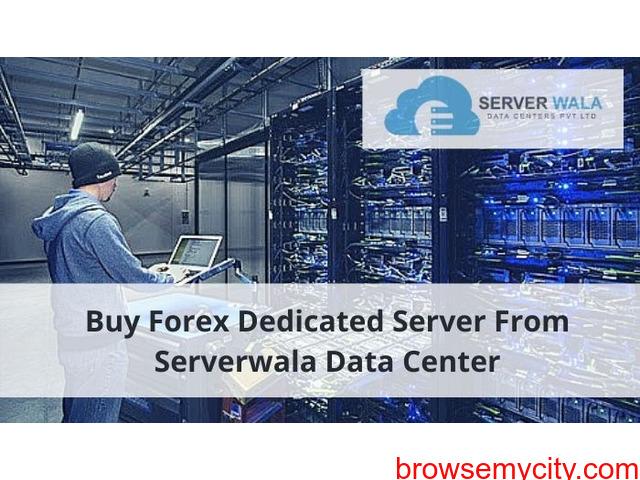 Buy Forex Dedicated Server From Serverwala Data Center - 1/1