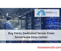 Buy Forex Dedicated Server From Serverwala Data Center