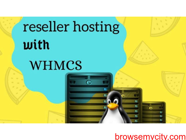 Cheapest Reseller Hosting with whmcs at wisesolution - 1/1