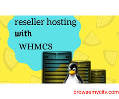 Cheapest Reseller Hosting with whmcs at wisesolution