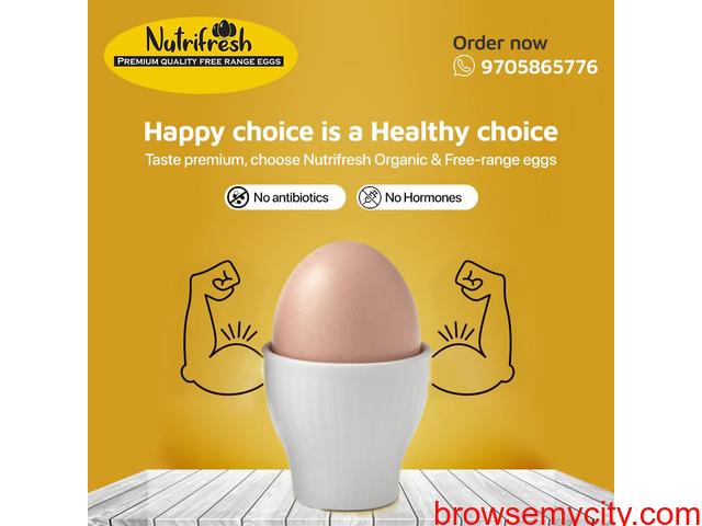 Premium FreeRange Eggs From Nutrifresh - 2/3