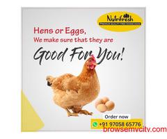 Premium FreeRange Eggs From Nutrifresh