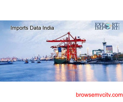 Search Importers Data India