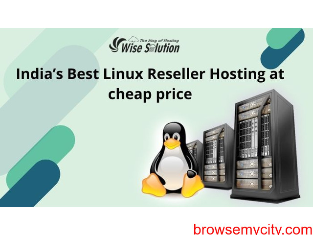 wisesolution- the best linux Reseller Hosting provider in india - 1/1