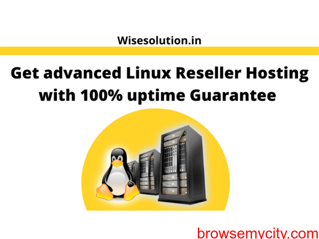 Get advanced Linux Reseller Hosting with 100% uptime Guarantee - 1/1