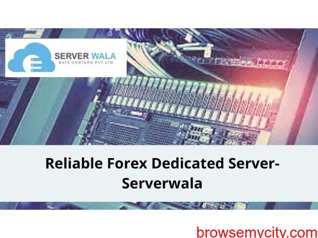 Reliable Forex Dedicated Server-Serverwala - 1/1