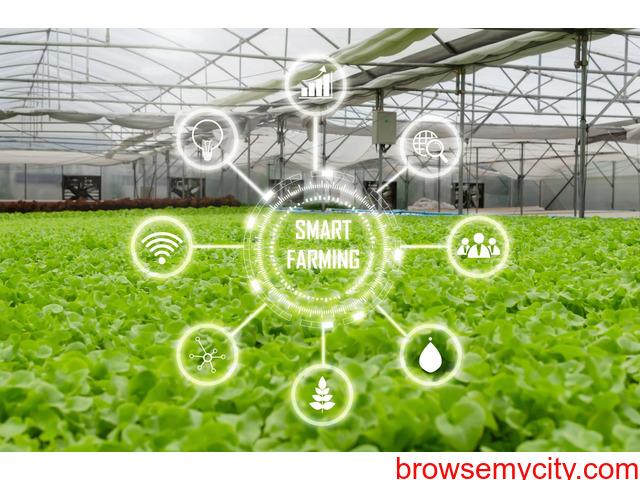 Smart agricultural system - 1/1