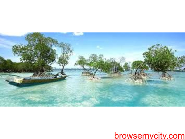 Andaman with neil island Tour Packages. - 1/1