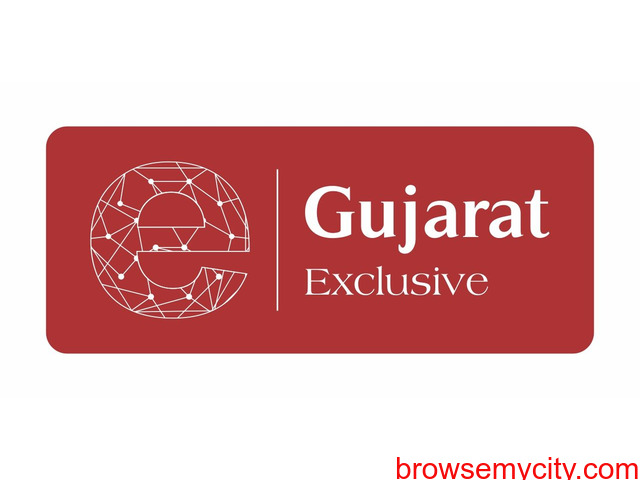 Gujarat Latest News in English | Gujarat Exclusive - 1/1
