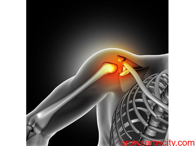 Manufacturer Of Orthopedic Implants and instruments - 2/3