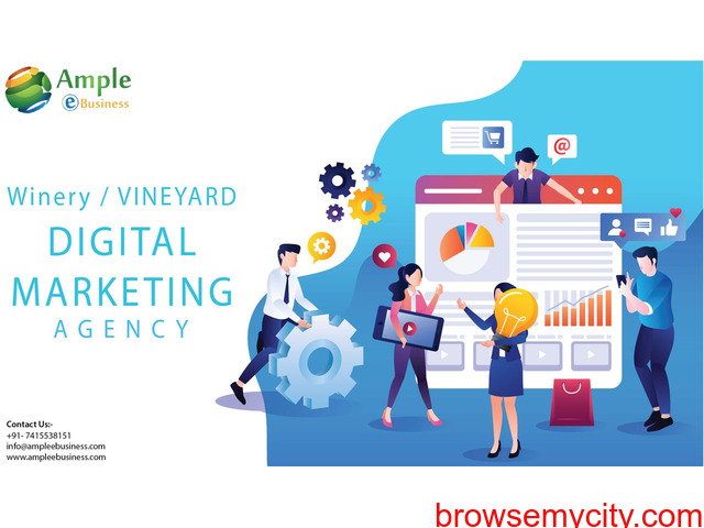 Digital Wine Website Promotion Agency - 1/1
