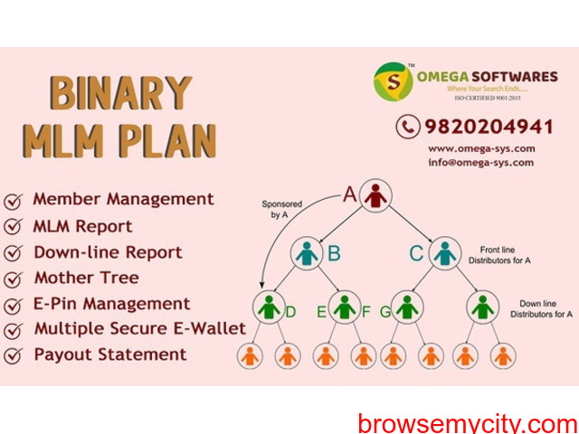 Affordable Binary MLM Plan Provider in India at low cost - 2/2