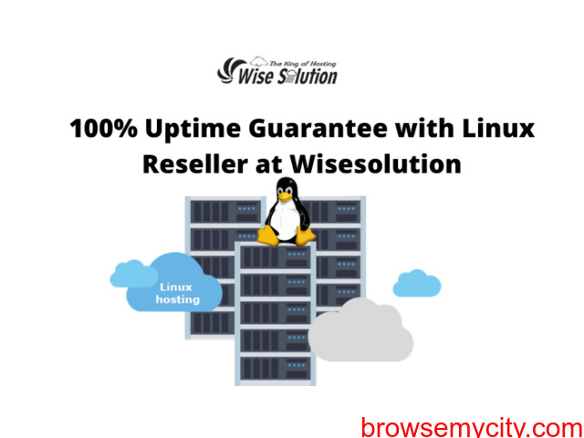 Cheapest Linux Reseller Hosting at Wisesolution - 1/1