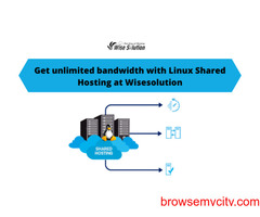 Get unlimited bandwidth with Linux Shared Hosting at Wisesolution