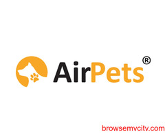 Pet Relocation Services in India