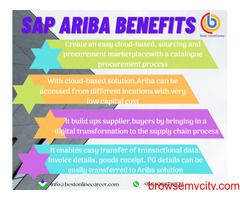 SAP Ariba Online Training in Pune | Ariba Procurement Training Course