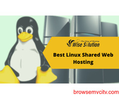 Buy Linux Shared Hosting with unlimited advantages