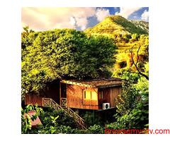 Weekend Getaways in Jaipur   Tree House Resort in Jaipur