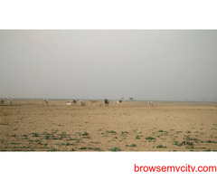 3389 Sq, Yards Commercial Plot for SALE at Dholera Smart City Industrial Zone