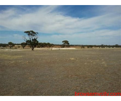 Commercial Land for Sale at Dholera Smart City (Otariya)