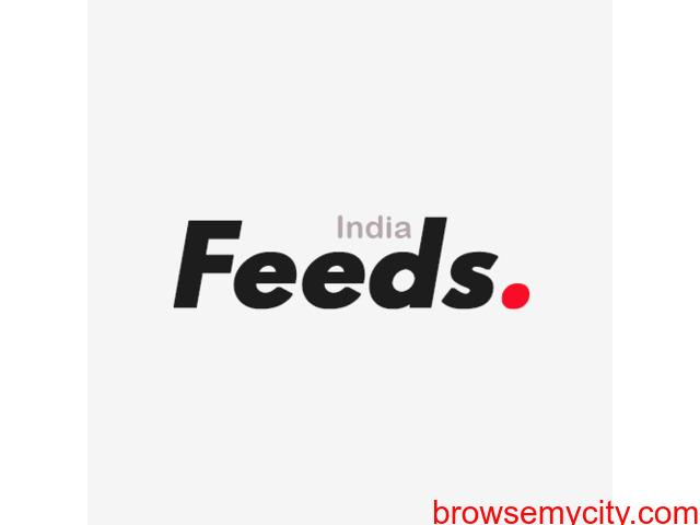 Best News & Media Company In India - FeedsIndia - 1/3
