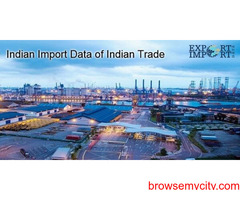 Indian Import Data to Maximize Profit in Importation Business