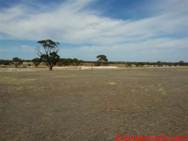 Industrial Land Available For Sale In Dholera SIR TP-2 B1 Scheme - 1/1
