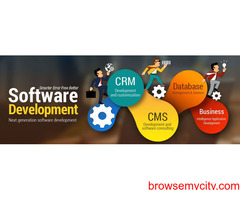 Software Development Company in Ambala, Haryana