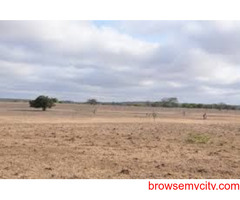 Residential NA land for sale in Gorasu Dholera smart city Ahmedabad