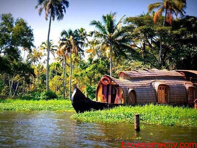 Backwaters, Beaches & Hills of Kerala - 2/2