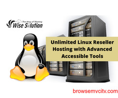 Unlimited Linux Shared Hosting with Advanced Accessible Tools.