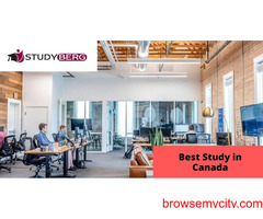 Best Study in Canada: Studyberg
