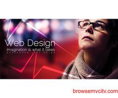 Web Designing Service in Ambala, Haryana