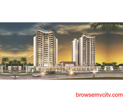 An ecstatic residential world at Ace Divino @9250002243