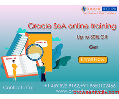 Best SOA online Training Free live demo