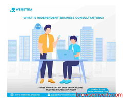 INDEPENDENT BUSINESS CONSULTANT