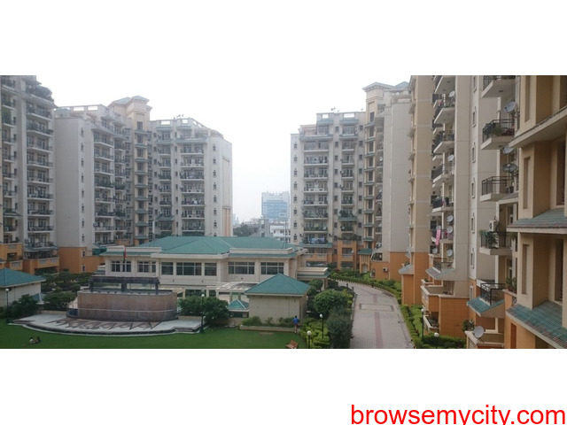 Suncity Heights for Rent on Golf Course Road Gurgaon - 1/1