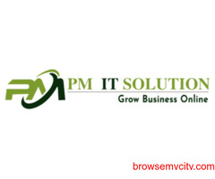 the PM IT solution