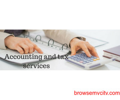 Accounting and Taxation Service Provider