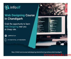 Web Designing Course in Chandigarh | INFOSIF